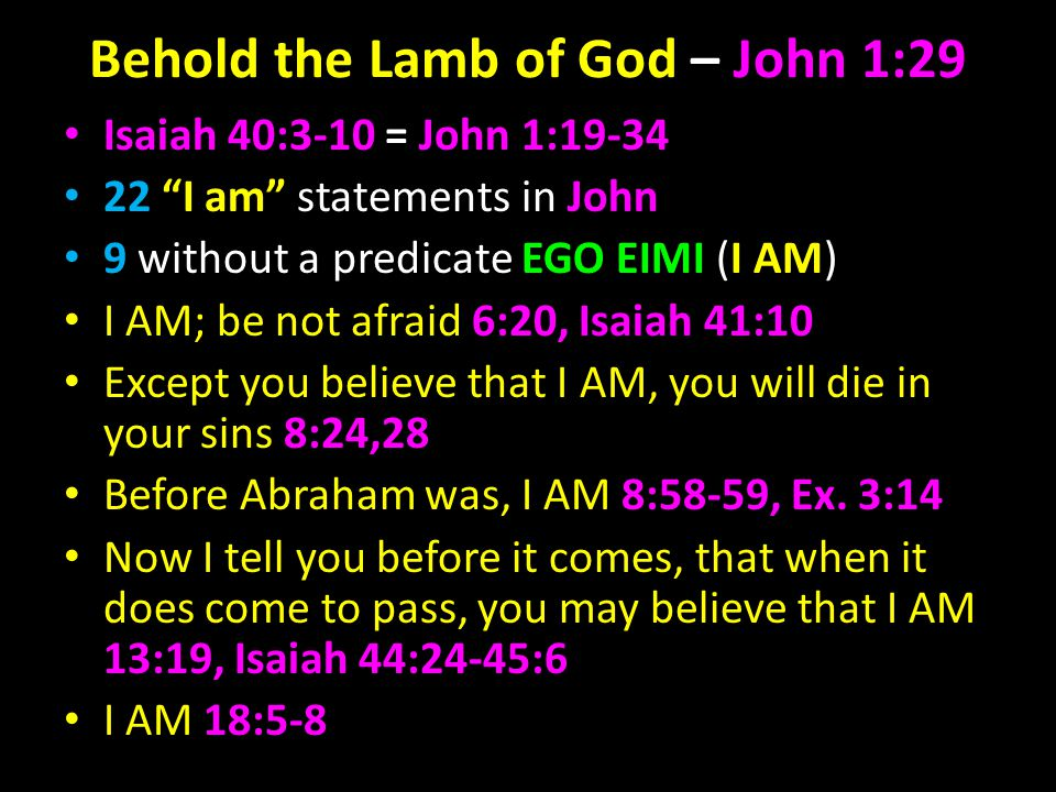 Behold the Lamb of God – John 1:29 Isaiah 40:3-10 = John 1:19-34 22 I am statements in John 9 without a predicate EGO EIMI (I AM) I AM; be not afraid 6:20, Isaiah 41:10 Except you believe that I AM, you will die in your sins 8:24,28 Before Abraham was, I AM 8:58-59, Ex.
