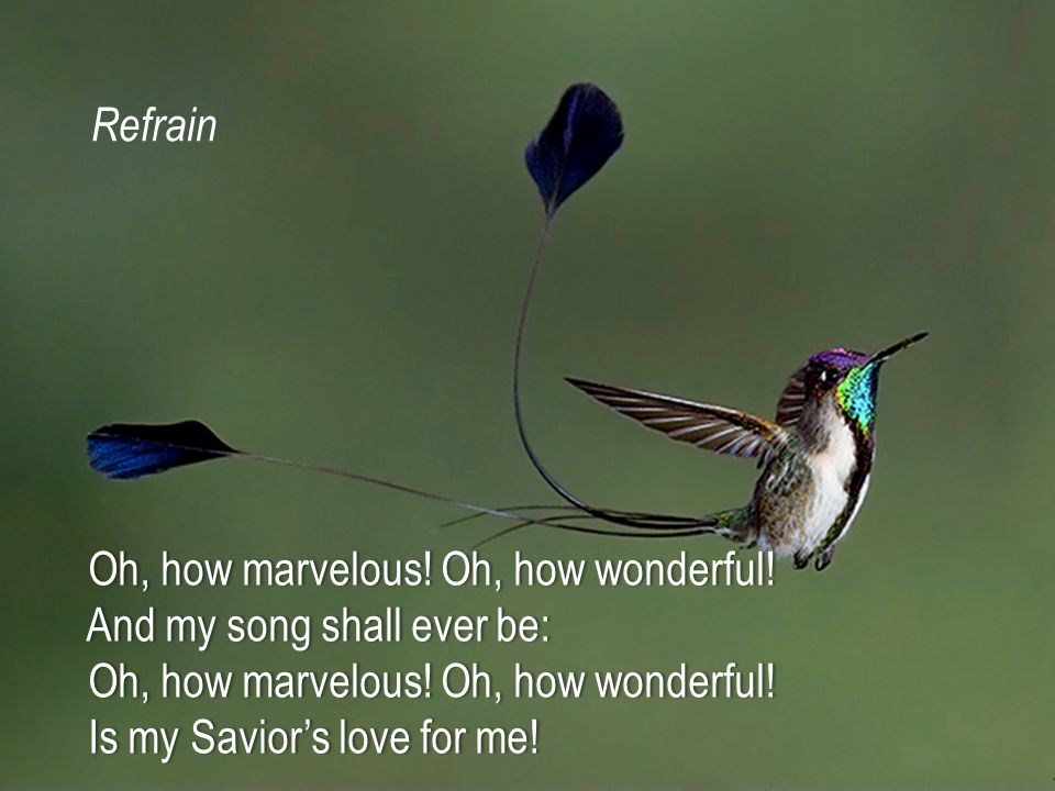 When with the ransomed in glory When with the ransomed in glory His face I at last shall see, His face I at last shall see, 'Twill be my joy through the ages 'Twill be my joy through the ages To sing of His love for me.
