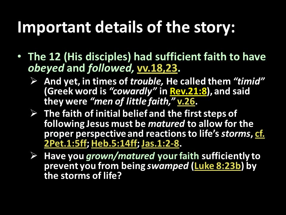 Important details of the story: The 12 (His disciples) had sufficient faith to have obeyed and followed, vv.18,23.