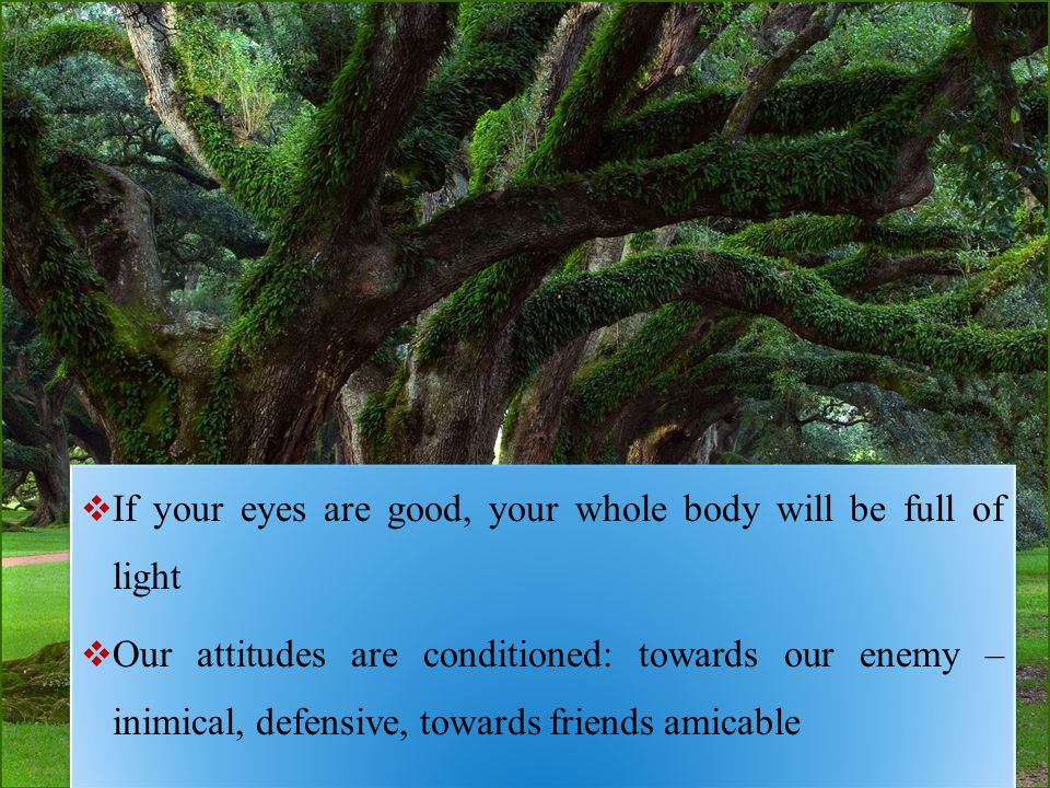  If your eyes are good, your whole body will be full of light  Our attitudes are conditioned: towards our enemy – inimical, defensive, towards friends amicable  If your eyes are good, your whole body will be full of light  Our attitudes are conditioned: towards our enemy – inimical, defensive, towards friends amicable
