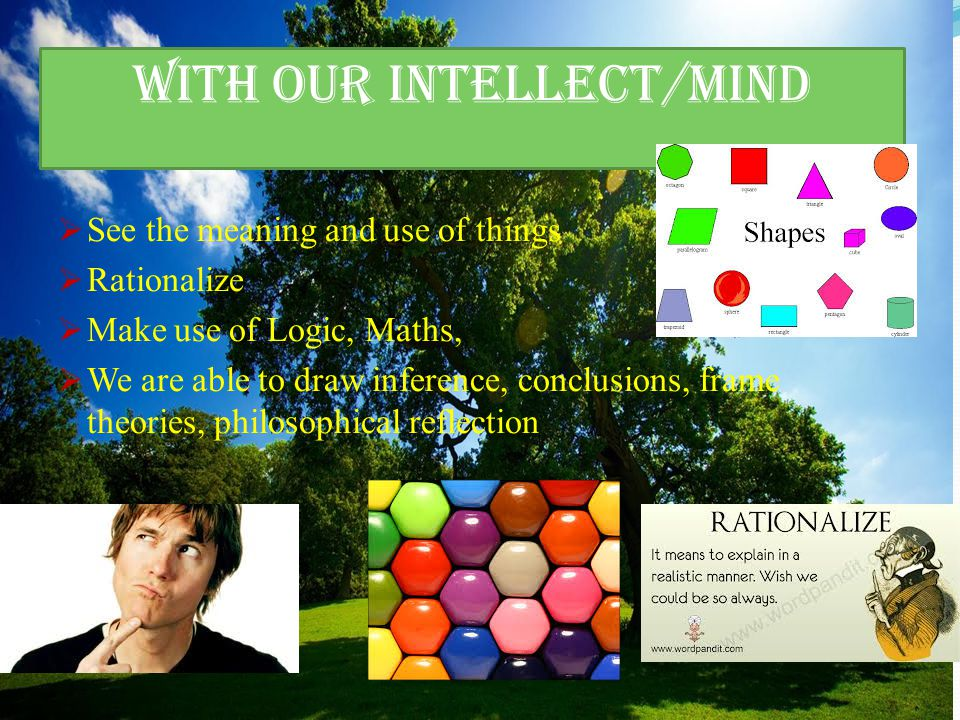 With our intellect/mind  See the meaning and use of things  Rationalize  Make use of Logic, Maths,  We are able to draw inference, conclusions, frame theories, philosophical reflection