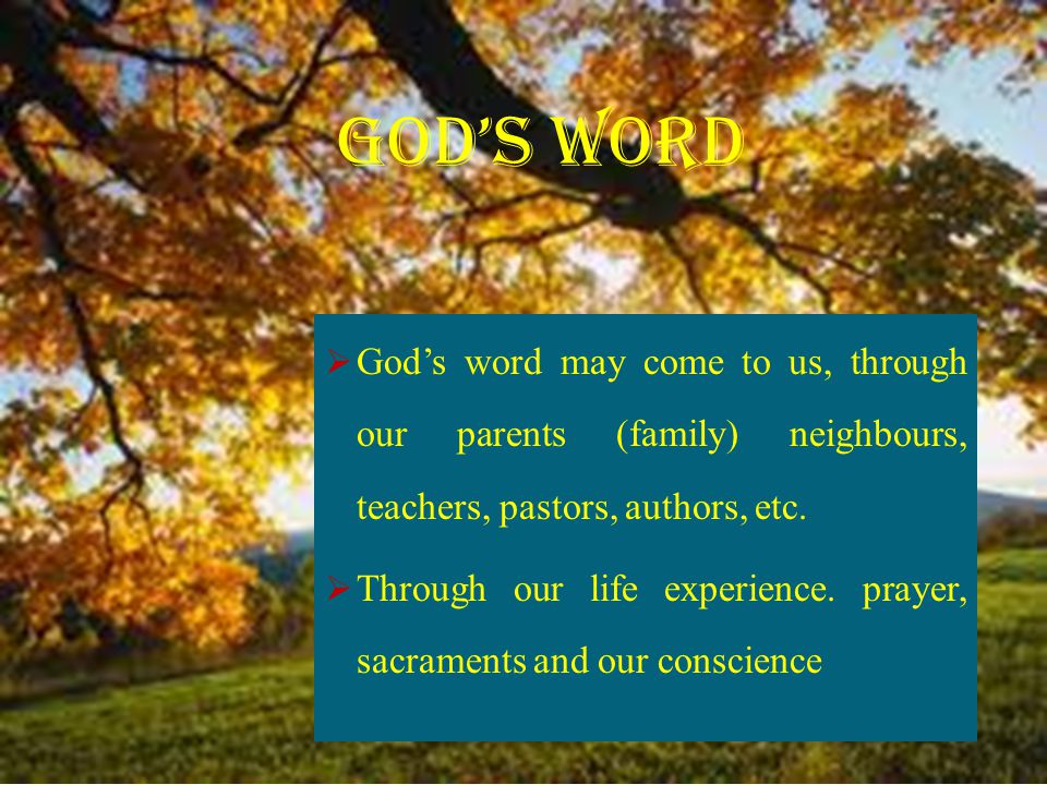  God's word may come to us, through our parents (family) neighbours, teachers, pastors, authors, etc.  Through our life experience. prayer, sacramen