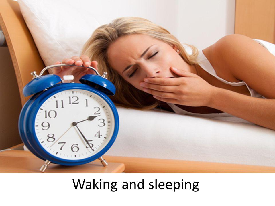 Waking and sleeping