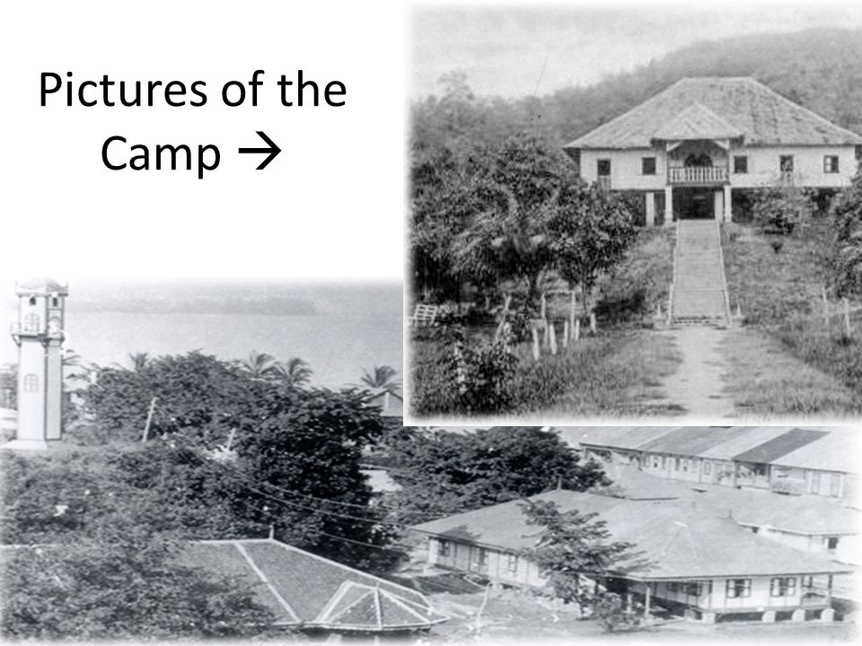 Pictures of the Camp 