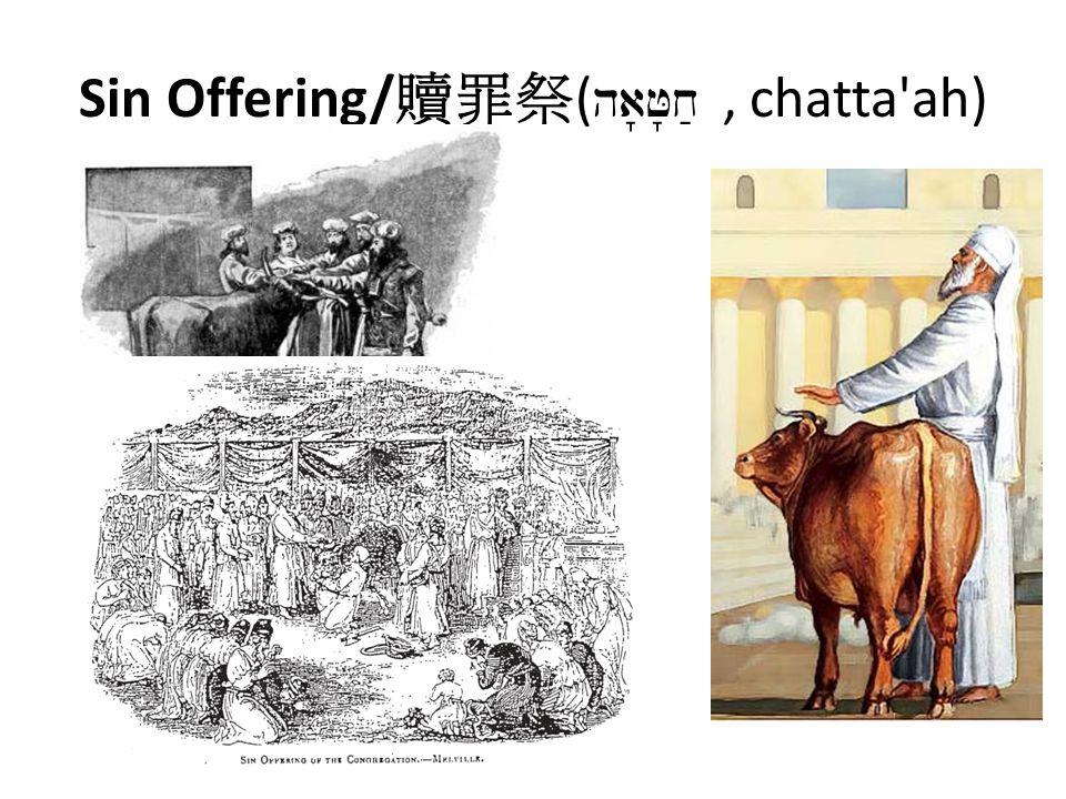 Sin Offering/ 贖罪祭 ( ha J x;, chatta ah)