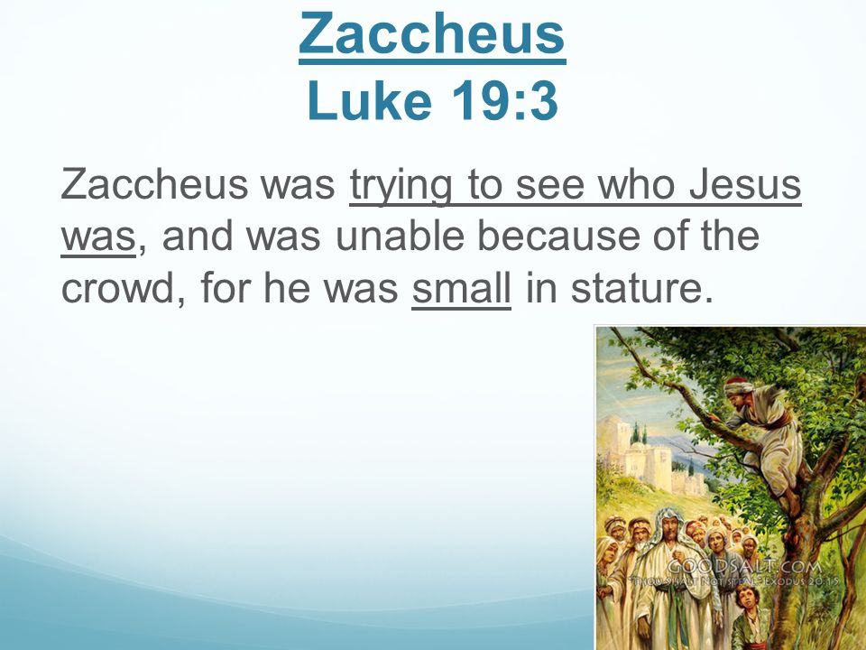 Zaccheus Luke 19:3 Zaccheus was trying to see who Jesus was, and was unable because of the crowd, for he was small in stature.