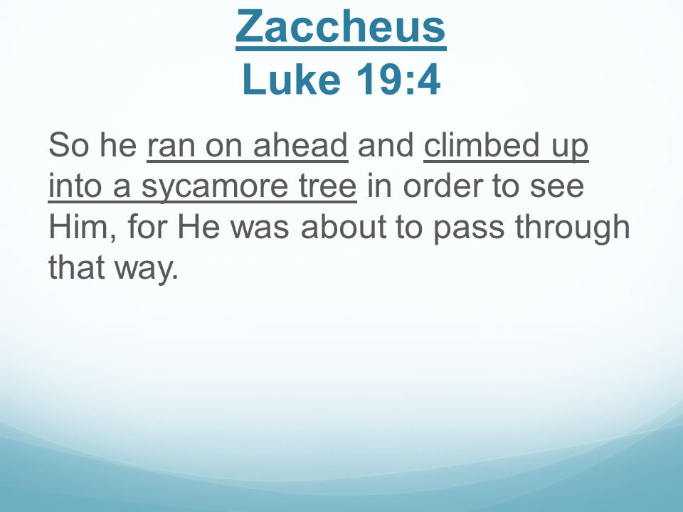 Zaccheus Luke 19:4 So he ran on ahead and climbed up into a sycamore tree in order to see Him, for He was about to pass through that way.