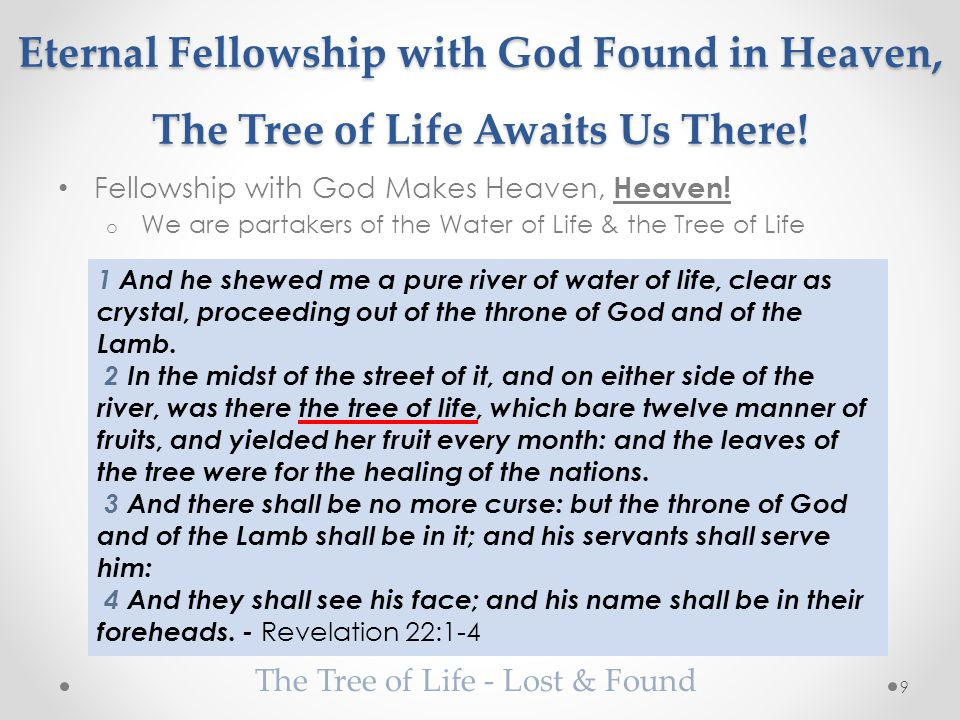 Eternal Fellowship with God Found in Heaven, The Tree of Life Awaits Us There.