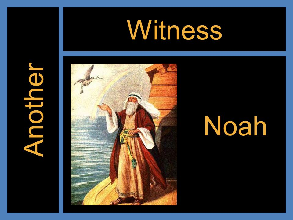 Witness Another Noah