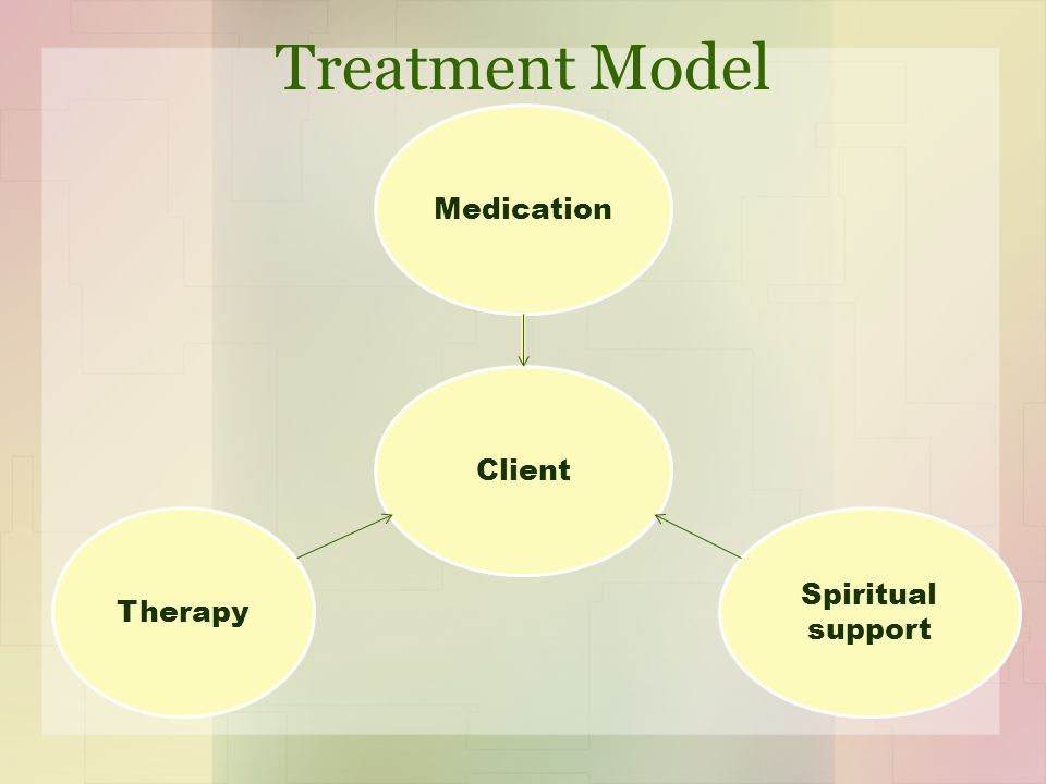 Treatment Model Medication Spiritual support Therapy Client