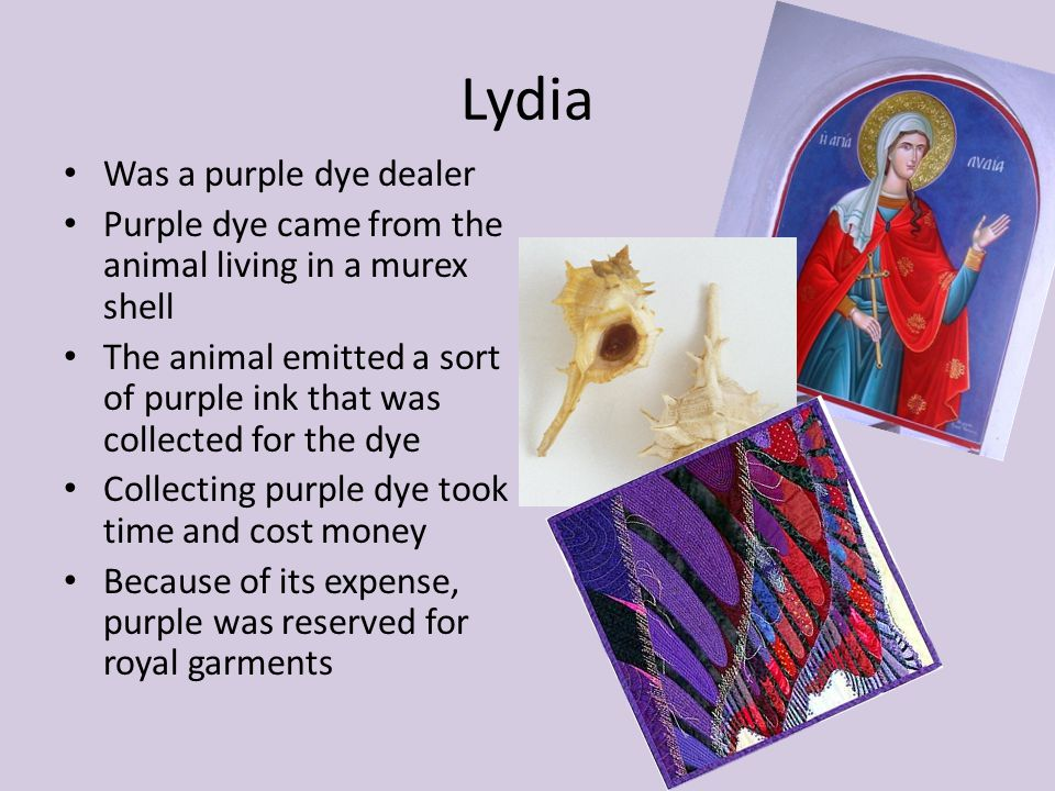 Lydia Was a purple dye dealer Purple dye came from the animal living in a murex shell The animal emitted a sort of purple ink that was collected for the dye Collecting purple dye took time and cost money Because of its expense, purple was reserved for royal garments