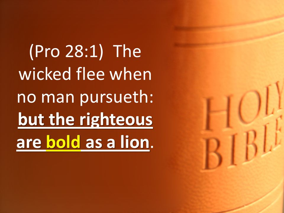 but the righteous are bold as a lion (Pro 28:1) The wicked flee when no man pursueth: but the righteous are bold as a lion.