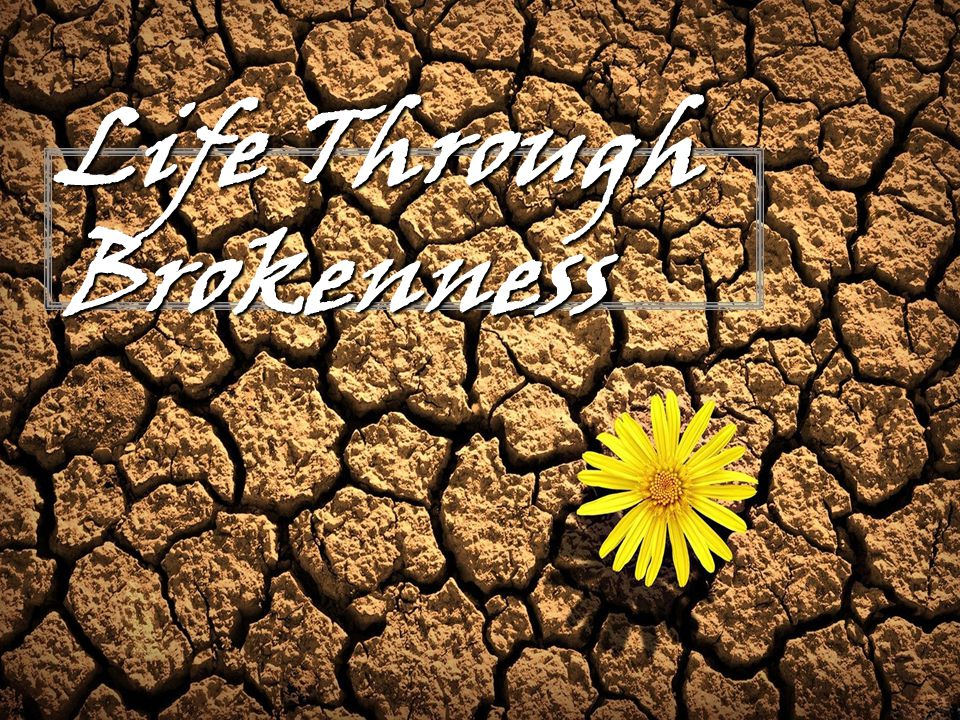 Psalm 51:17 (NIV) - The sacrifices of God are a broken spirit; a broken and contrite heart, O God, you will not despise.