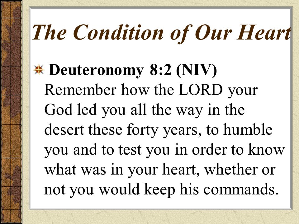 The Condition of Our Heart Deuteronomy 8:2 (NIV) Remember how the LORD your God led you all the way in the desert these forty years, to humble you and