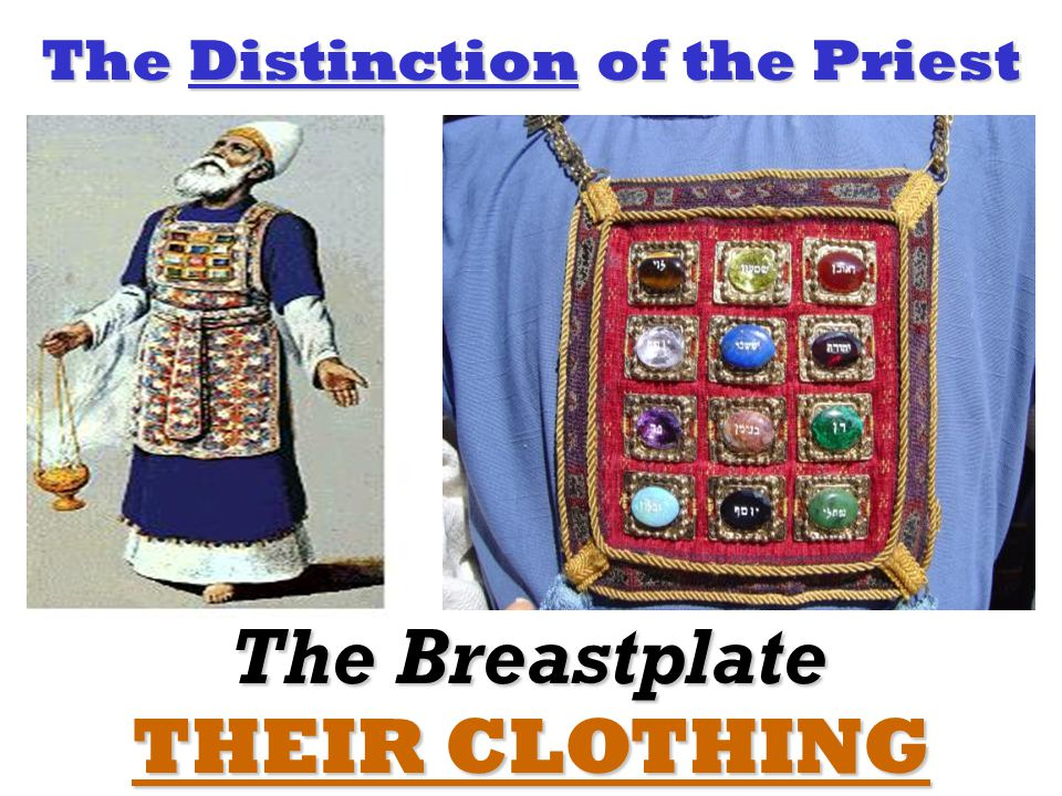 The Distinction of the Priest THEIR CLOTHING The Breastplate