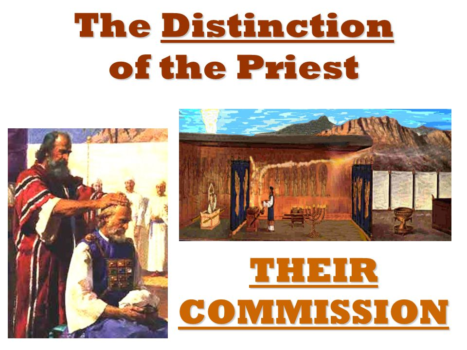 The Distinction of the Priest THEIR COMMISSION