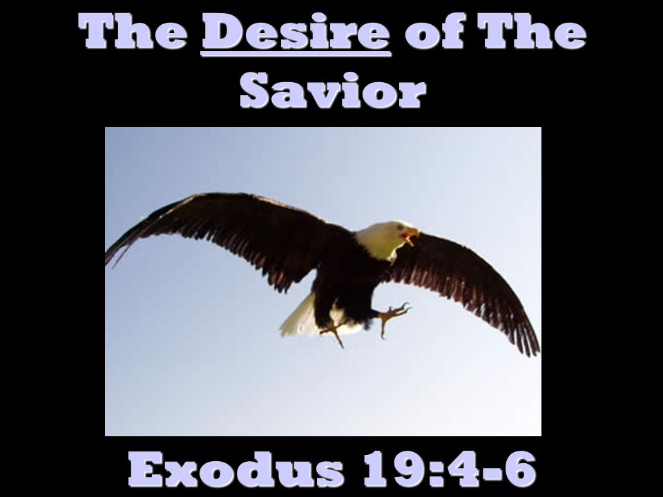 The Desire of The Savior Exodus 19:4-6