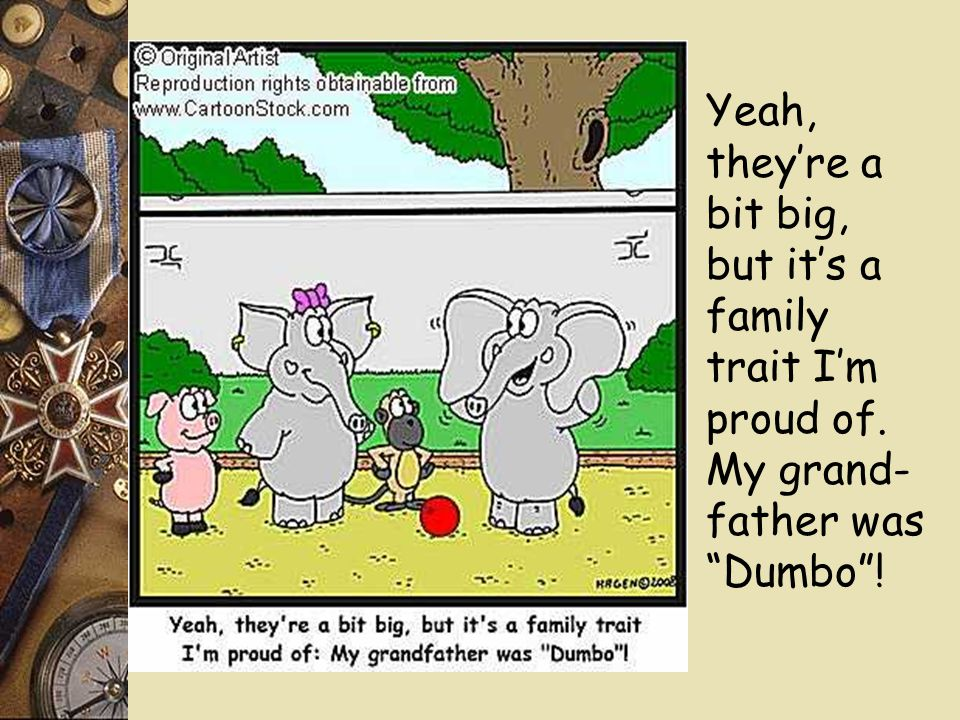"Yeah, they're a bit big, but it's a family trait I'm proud of. My grand- father was ""Dumbo""!"