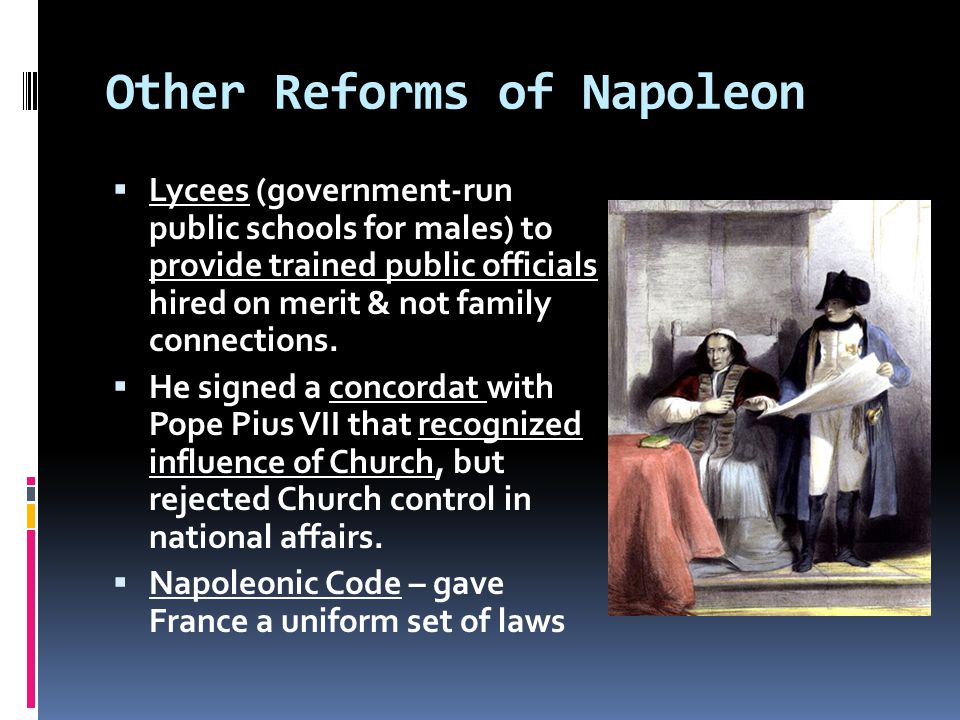 Other Reforms of Napoleon  Lycees (government-run public schools for males) to provide trained public officials hired on merit & not family connections.