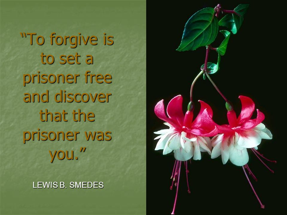 """To forgive is to set a prisoner free and discover that the prisoner was you."" LEWIS B. SMEDES"