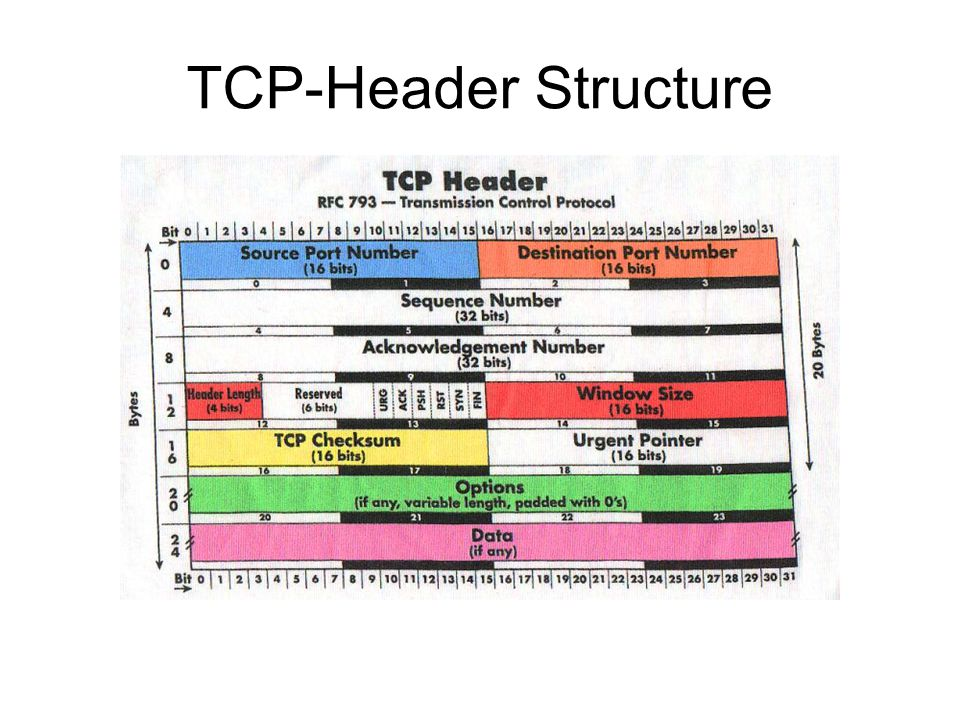 TCP-Header Structure