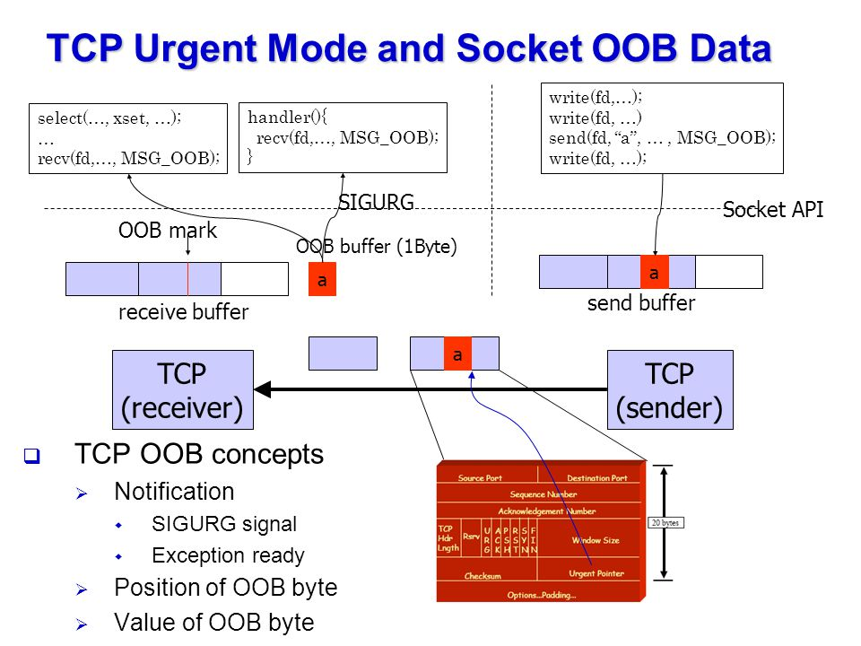 TCP Urgent Mode and Socket OOB Data  TCP OOB concepts  Notification  SIGURG signal  Exception ready  Position of OOB byte  Value of OOB byte TCP