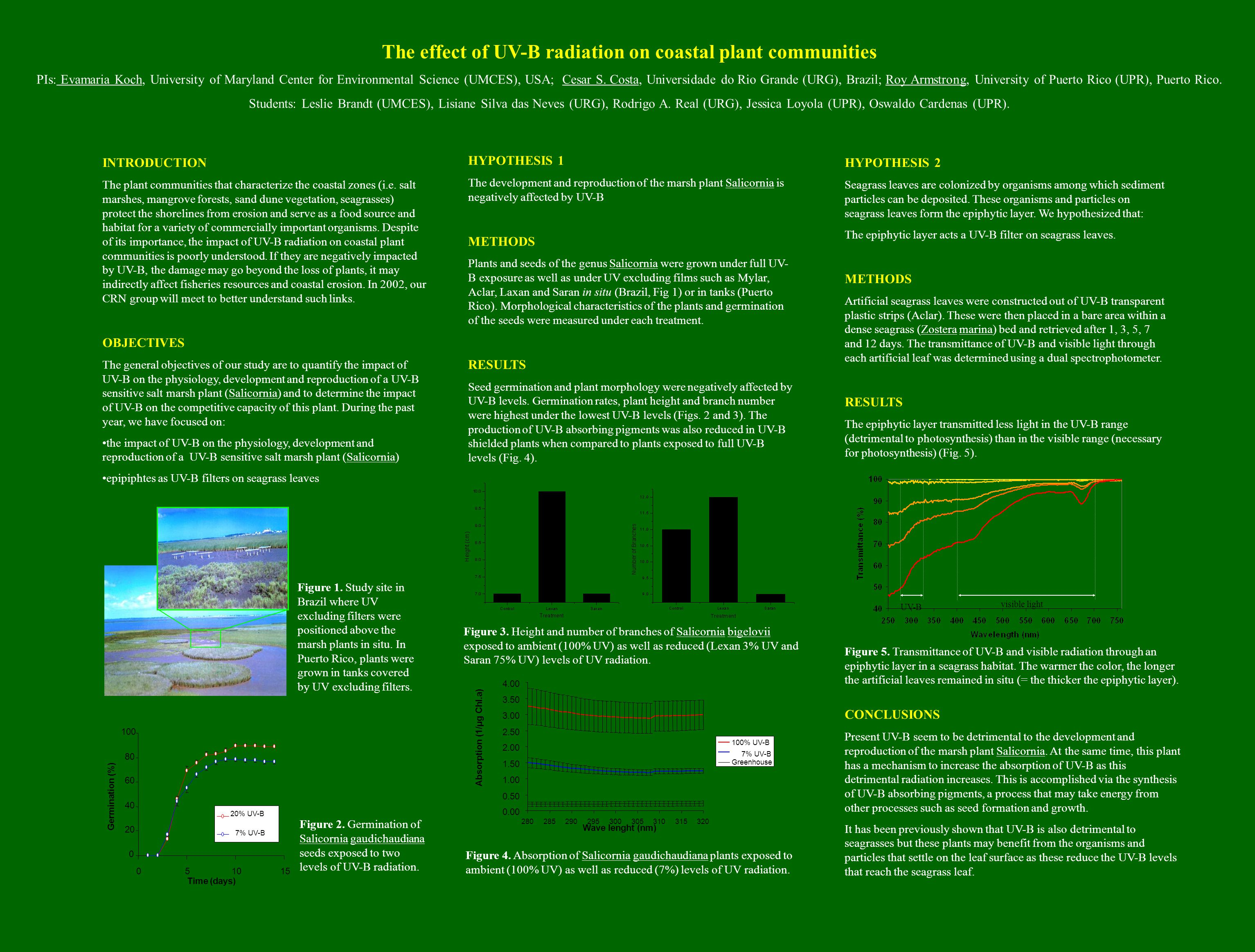 The effect of UV-B radiation on coastal plant communities PIs: Evamaria Koch, University of Maryland Center for Environmental Science (UMCES), USA; Cesar S.