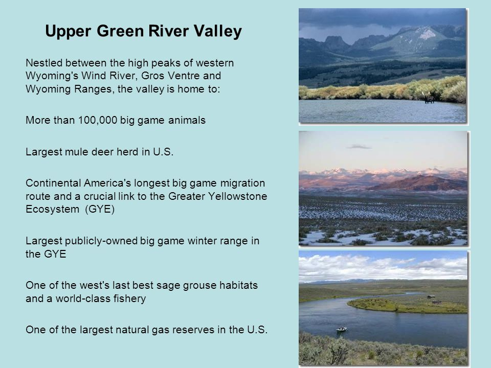 Upper Green River Valley Nestled between the high peaks of western Wyoming s Wind River, Gros Ventre and Wyoming Ranges, the valley is home to: More than 100,000 big game animals Largest mule deer herd in U.S.