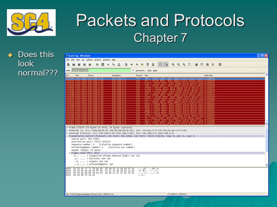 Packets and Protocols Chapter 7  Does this look normal