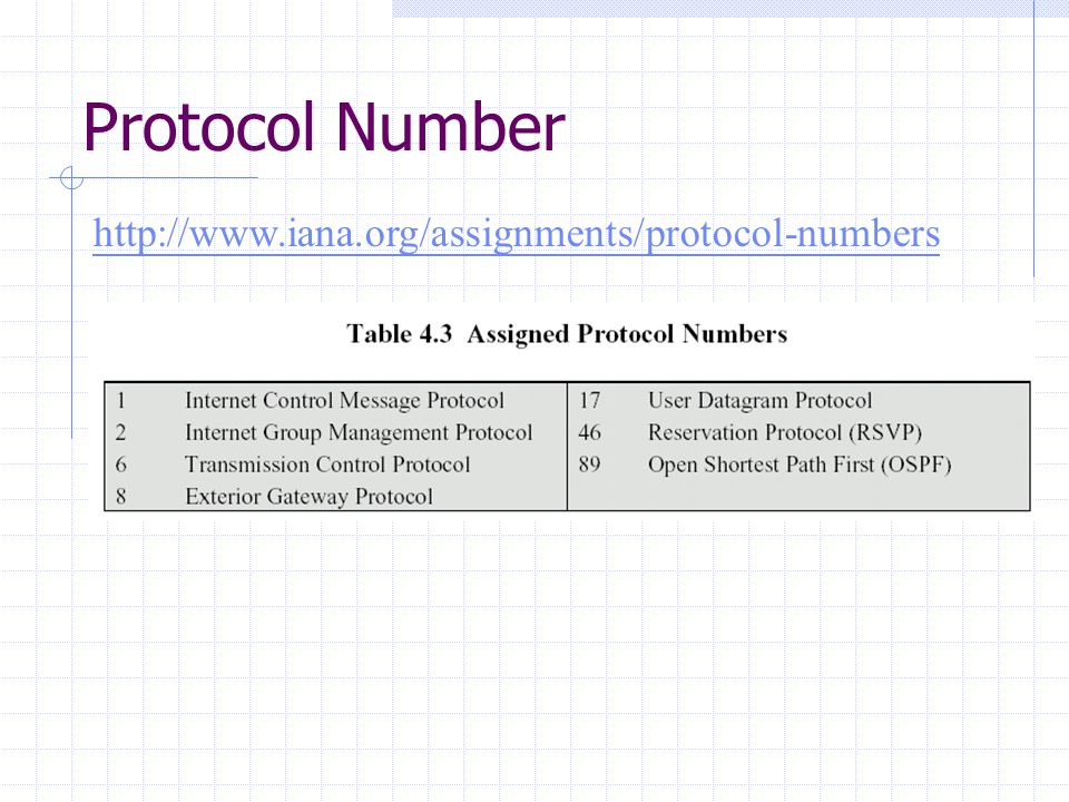 Protocol Number http://www.iana.org/assignments/protocol-numbers