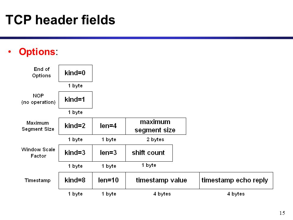 15 TCP header fields Options: