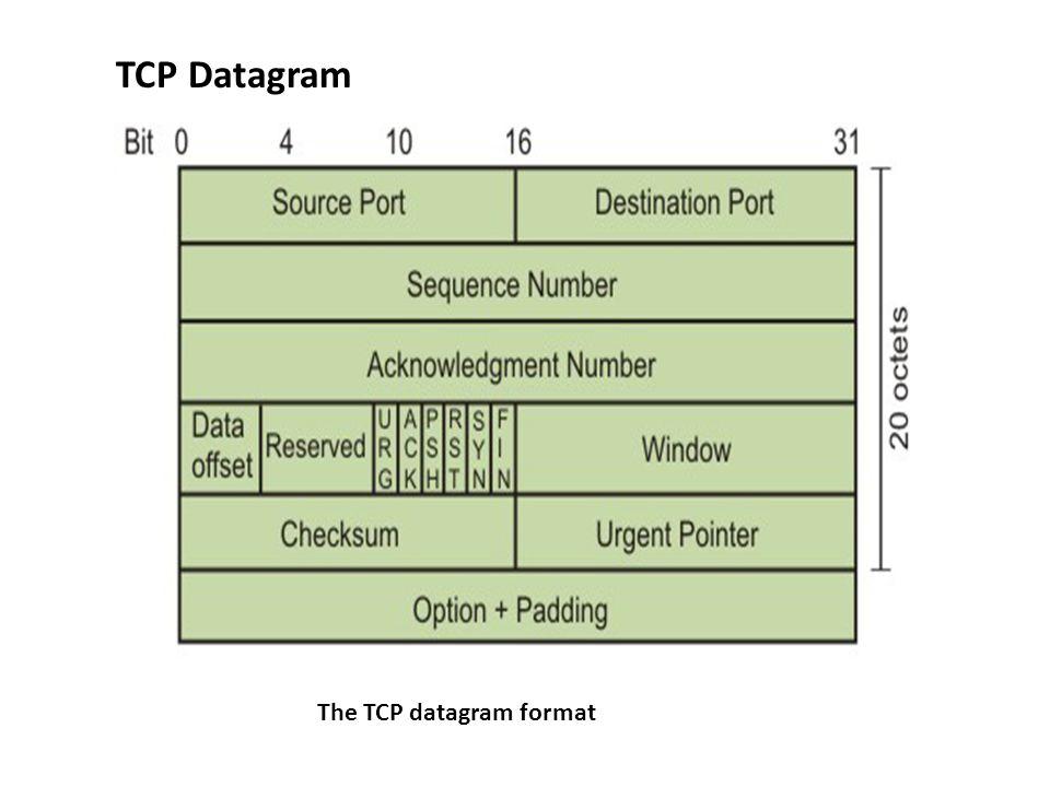 The TCP datagram format TCP Datagram