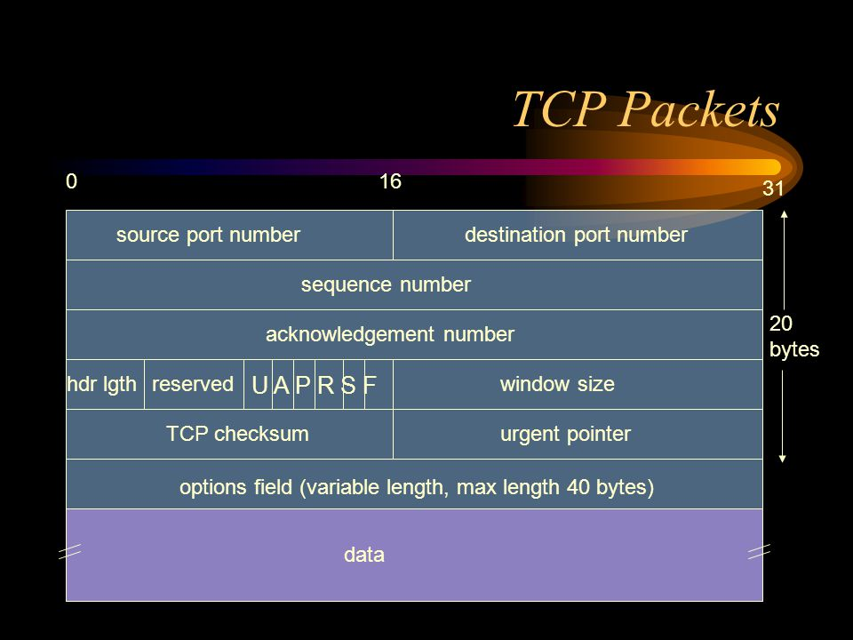 TCP Packets 016 31 source port numberdestination port number sequence number acknowledgement number hdr lgthreserved U A P R S F window size TCP checksumurgent pointer options field (variable length, max length 40 bytes) data 20 bytes