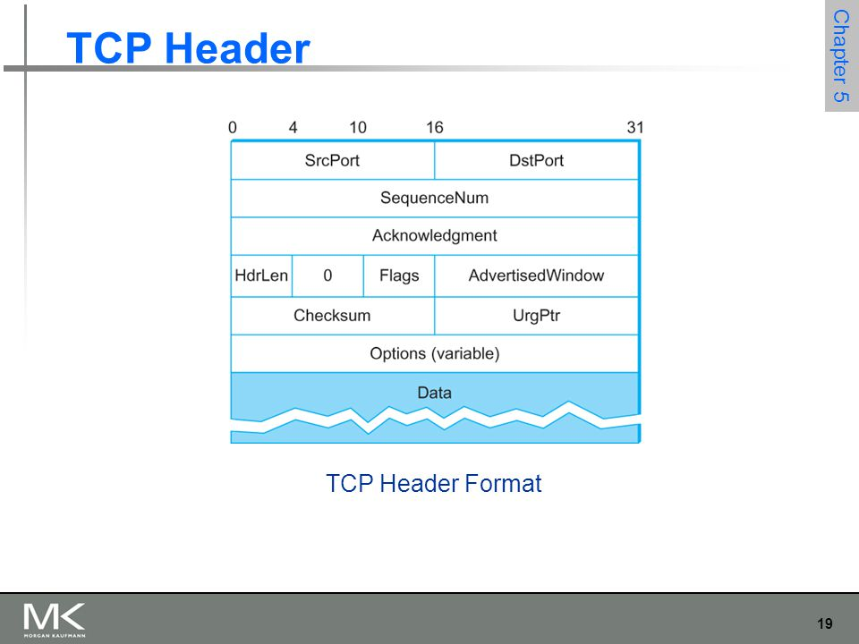 19 Chapter 5 TCP Header TCP Header Format