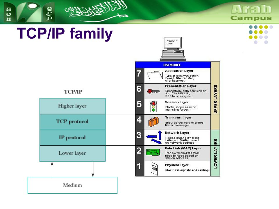 TCP/IP family