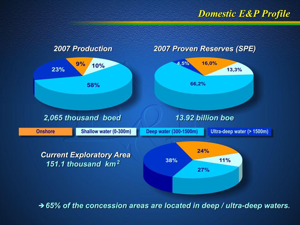 Domestic E&P Profile