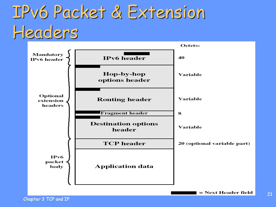 Chapter 3 TCP and IP 21 IPv6 Packet & Extension Headers