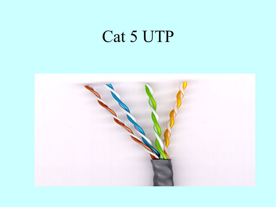Cat 5 UTP