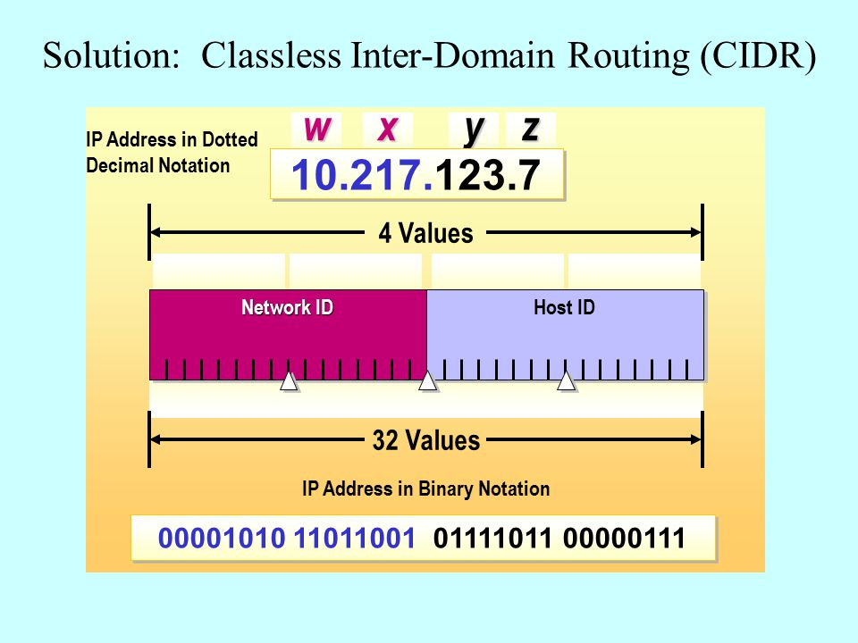 Solution: Classless Inter-Domain Routing (CIDR)wxyz 10.217.123.7 00001010 11011001 01111011 00000111 IP Address in Dotted Decimal Notation Network ID Host ID 32 Values 4 Values IP Address in Binary Notation