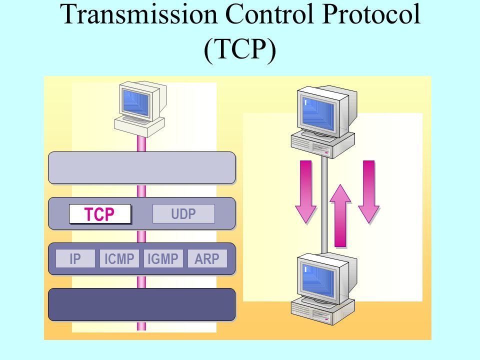 Transmission Control Protocol (TCP) IPICMPIGMPARP UDP TCP