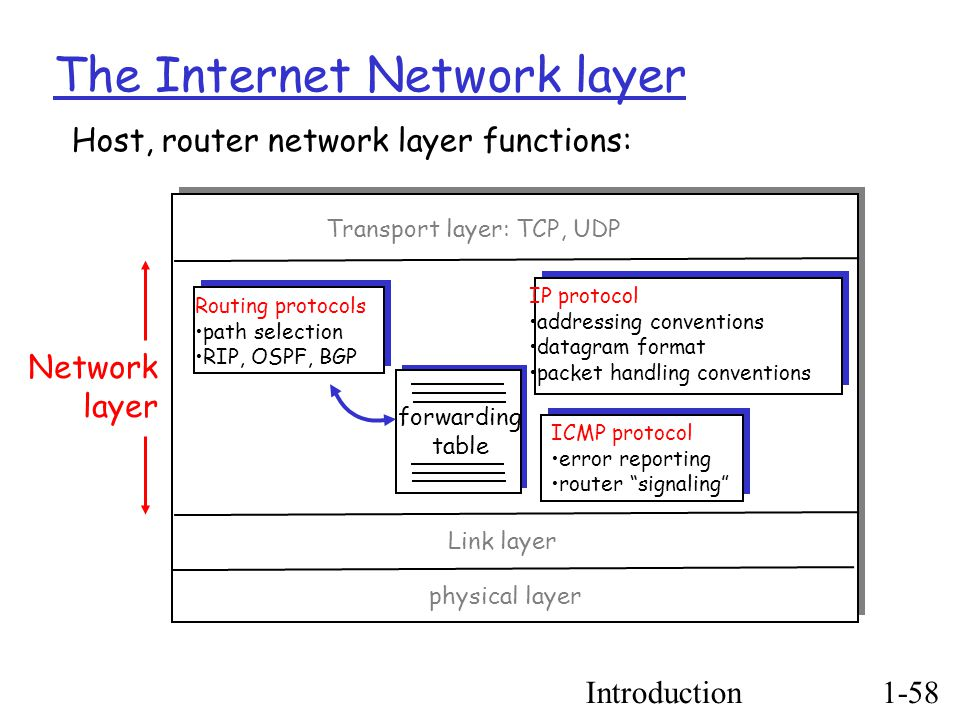 Introduction1-58 The Internet Network layer forwarding table Host, router network layer functions: Routing protocols path selection RIP, OSPF, BGP IP protocol addressing conventions datagram format packet handling conventions ICMP protocol error reporting router signaling Transport layer: TCP, UDP Link layer physical layer Network layer