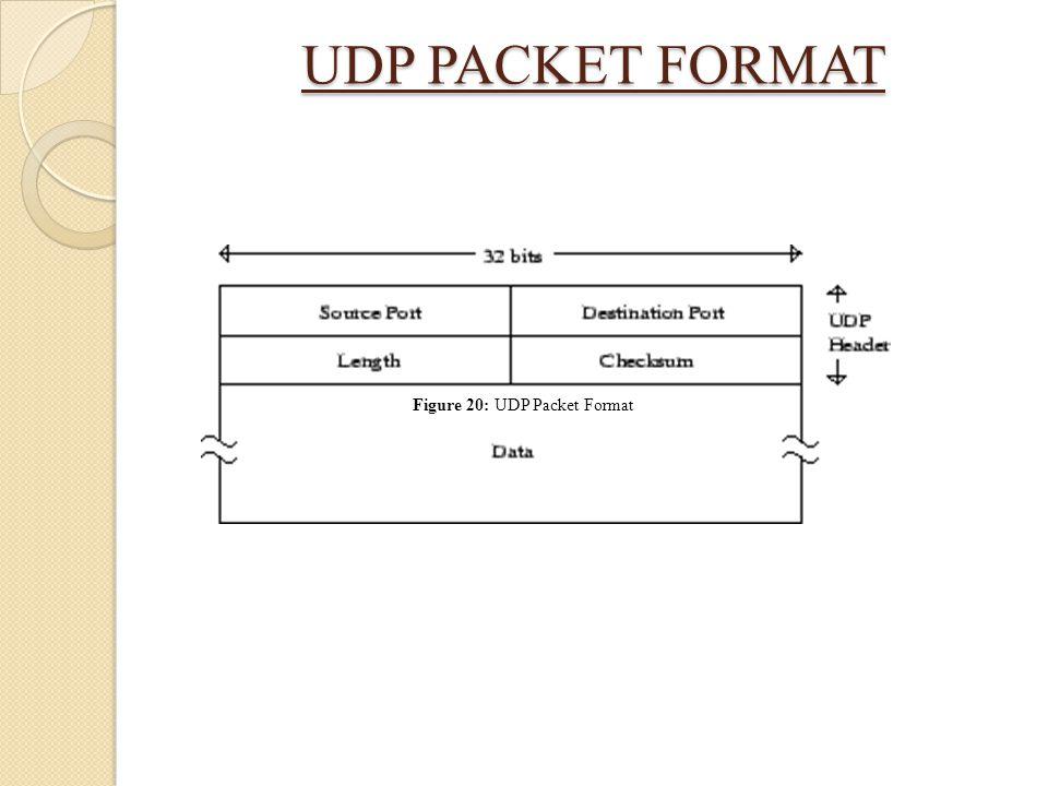 UDP PACKET FORMAT Figure 20: UDP Packet Format