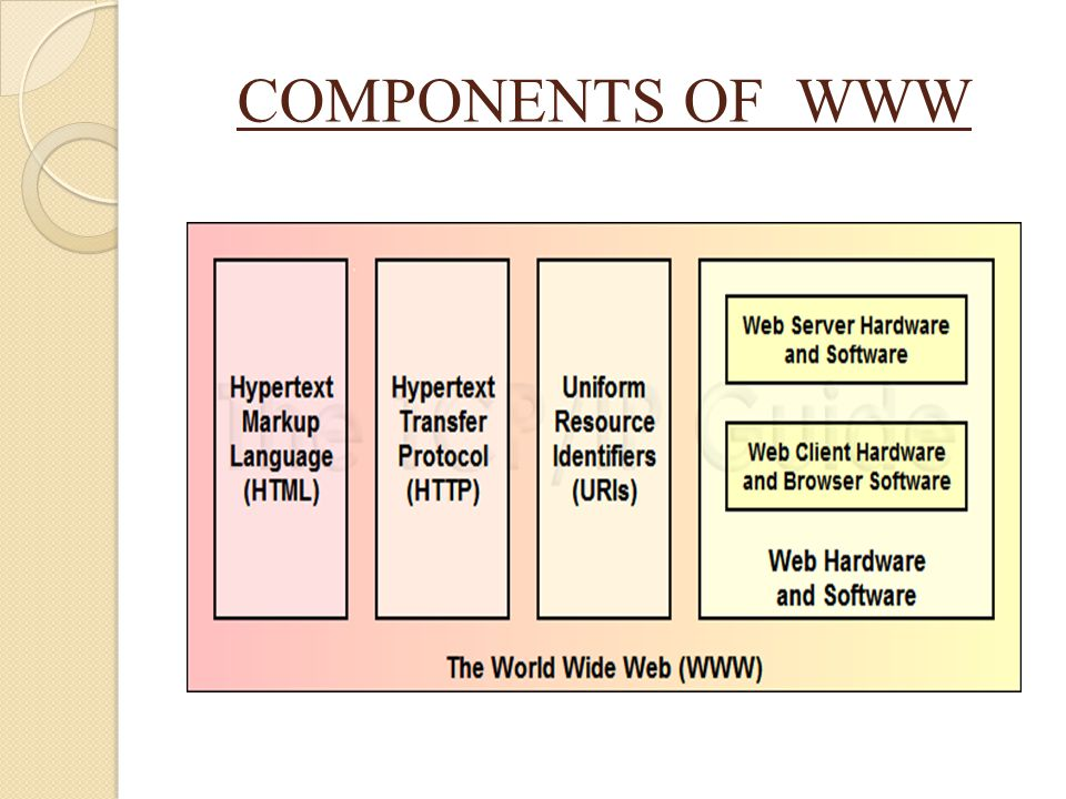 COMPONENTS OF WWW