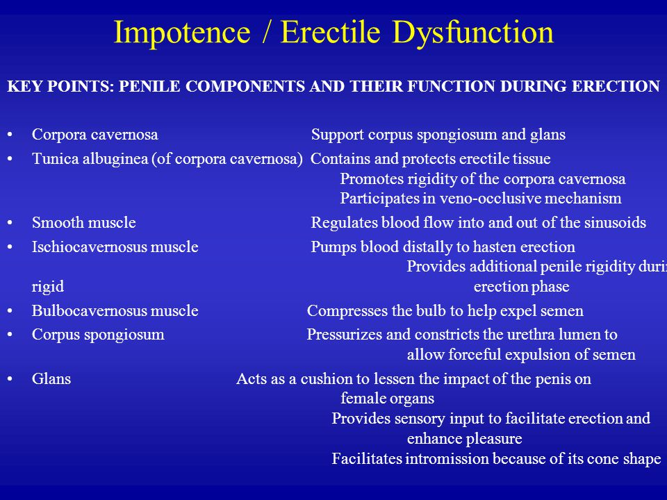 Impotence / Erectile Dysfunction KEY POINTS: PENILE COMPONENTS AND THEIR FUNCTION DURING ERECTION Corpora cavernosa Support corpus spongiosum and glans Tunica albuginea (of corpora cavernosa) Contains and protects erectile tissue Promotes rigidity of the corpora cavernosa Participates in veno-occlusive mechanism Smooth muscle Regulates blood flow into and out of the sinusoids Ischiocavernosus muscle Pumps blood distally to hasten erection Provides additional penile rigidity during rigid erection phase Bulbocavernosus muscle Compresses the bulb to help expel semen Corpus spongiosum Pressurizes and constricts the urethra lumen to allow forceful expulsion of semen Glans Acts as a cushion to lessen the impact of the penis on female organs Provides sensory input to facilitate erection and enhance pleasure Facilitates intromission because of its cone shape