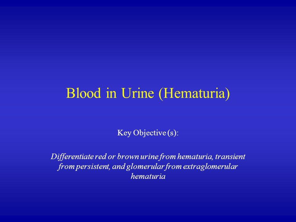 Blood in Urine (Hematuria) Key Objective (s): Differentiate red or brown urine from hematuria, transient from persistent, and glomerular from extraglo