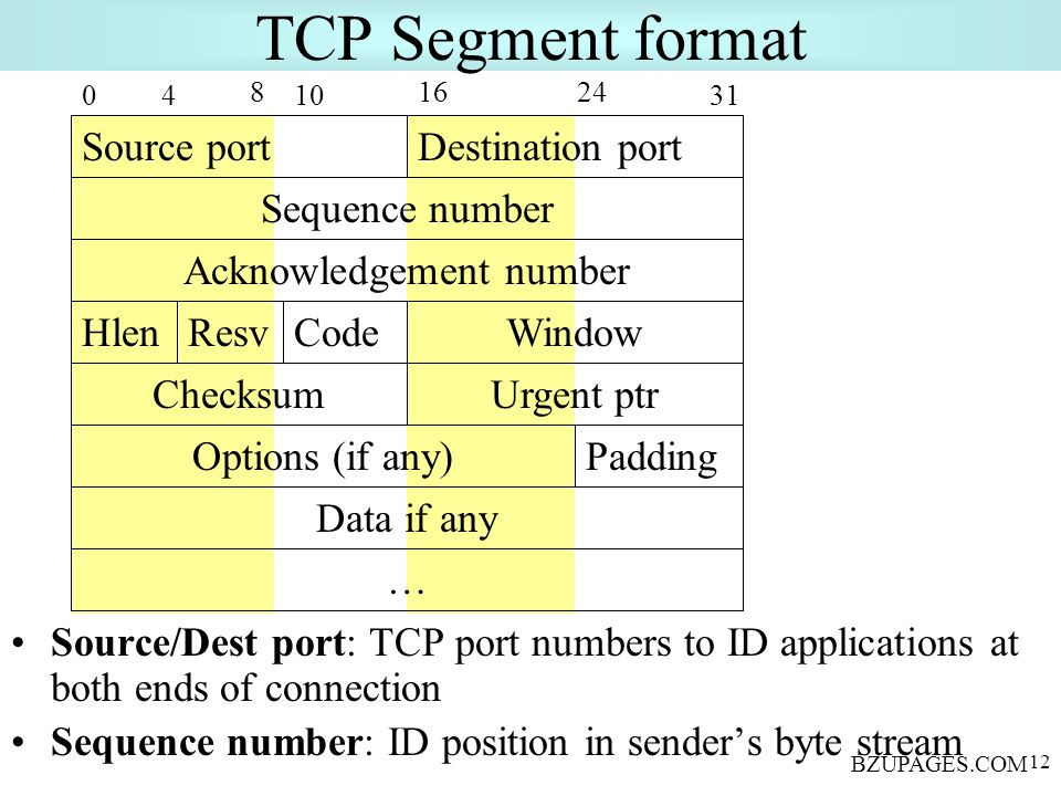 BZUPAGES.COM 12 TCP Segment format Source/Dest port: TCP port numbers to ID applications at both ends of connection Sequence number: ID position in sender's byte stream Source portDestination port Sequence number 0 816 31 24 Acknowledgement number 4 Hlen 10 ResvCodeWindow Urgent ptrChecksum Options (if any)Padding Data if any …