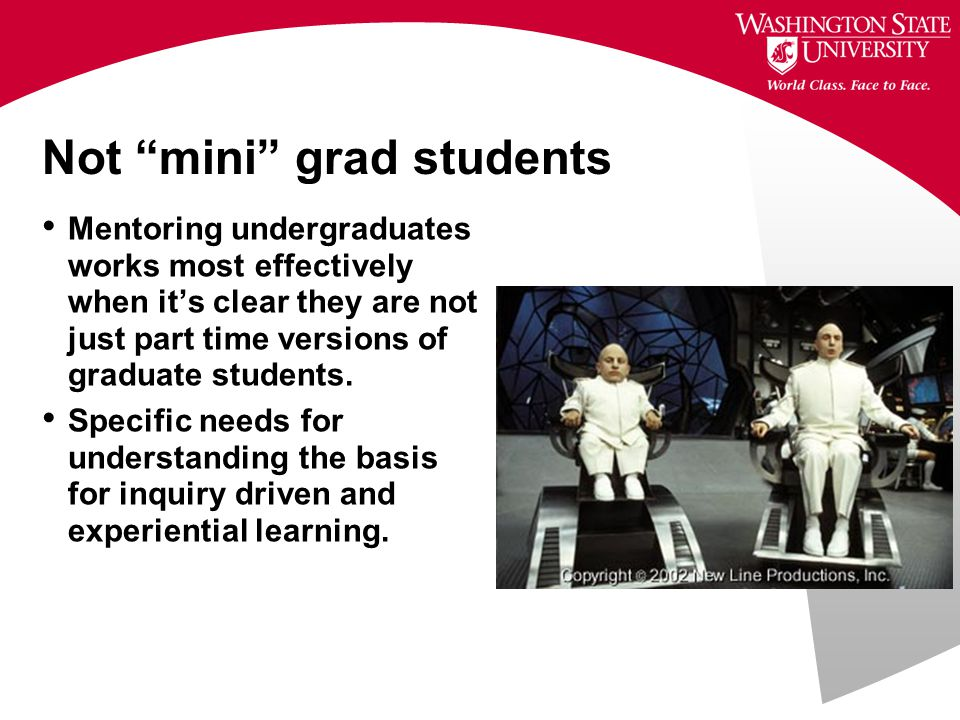 Not mini grad students Mentoring undergraduates works most effectively when it's clear they are not just part time versions of graduate students.
