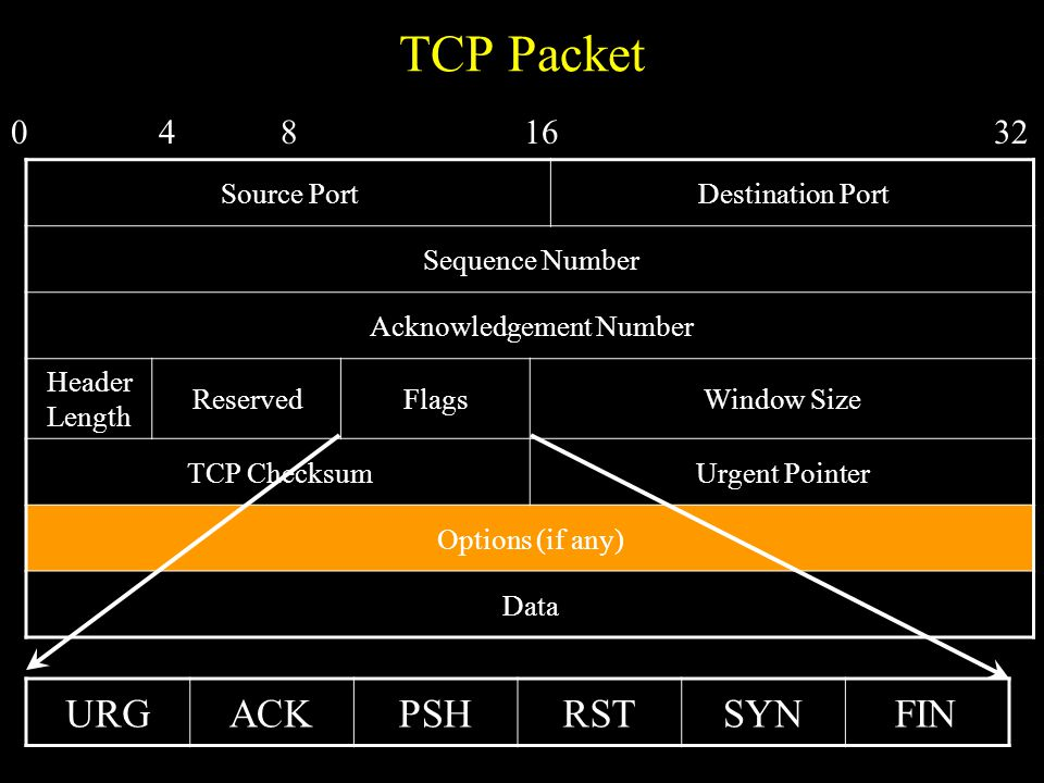 TCP Packet Source PortDestination Port Sequence Number Acknowledgement Number Header Length ReservedFlagsWindow Size TCP ChecksumUrgent Pointer Options (if any) Data 0481632 URGACKPSHRSTSYNFIN