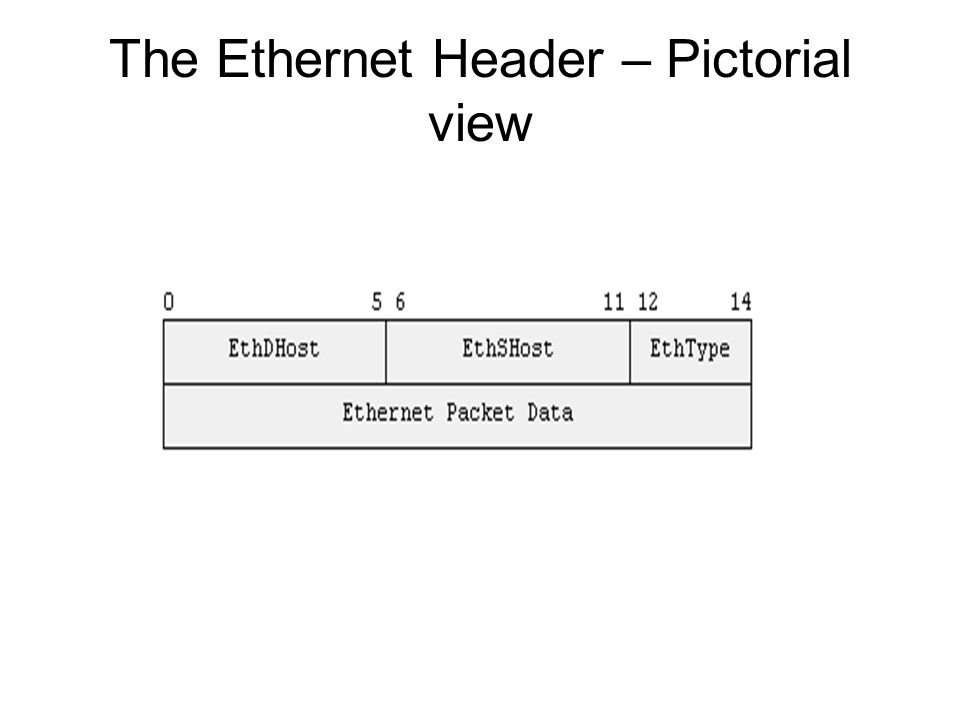 The Ethernet Header – Data structure view Defined in linux/if_ether.h Looks like this : struct ethhdr { unsigned char h_dest[ETH_ALEN]; /* destination eth addr */ unsigned char h_source[ETH_ALEN]; /* source ether addr */ unsigned short h_proto; /* packet type ID field */ } We will fill this structure up to create the Ethernet Header for our packet.