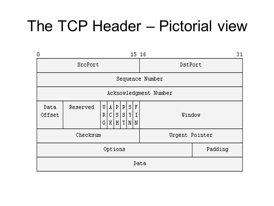 The TCP header – Data Structures view struct tcphdr { __u16 source; __u16 dest; __u32 seq; __u32 ack_seq; __u16 doff:4, res1:4, cwr:1, ece:1, urg:1, ack:1, psh:1, rst:1, syn:1, fin:1; __u16 window; __u16 check; __u16 urg_ptr; }; Define in linux/tcp.h